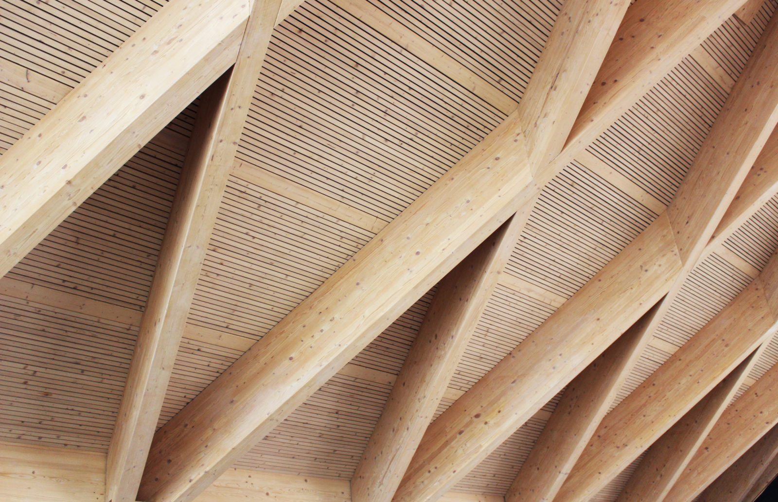 KjellanderSjöberg Restaurang-Magnolia  Foto 03 3600x2324px